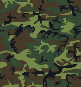 Armee will sich künftig mehr auf ihre Kernaufgaben konzentrieren