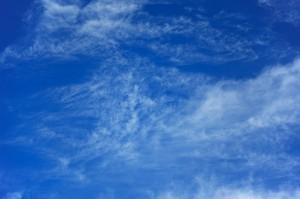 Verminderung der CO2-Emissionen