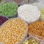 Für freies Saatgut – jetzt Petition unterschreiben!