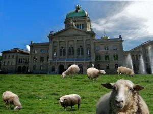 Mitteilung des Bundesrates. (Symbolbild)