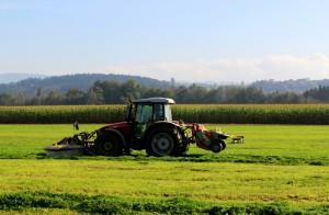 Auswertungen des Direktzahlungssystems zeigen Engagement der Landwirte. (Symbolbild)