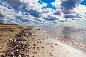 beach-768999_1920