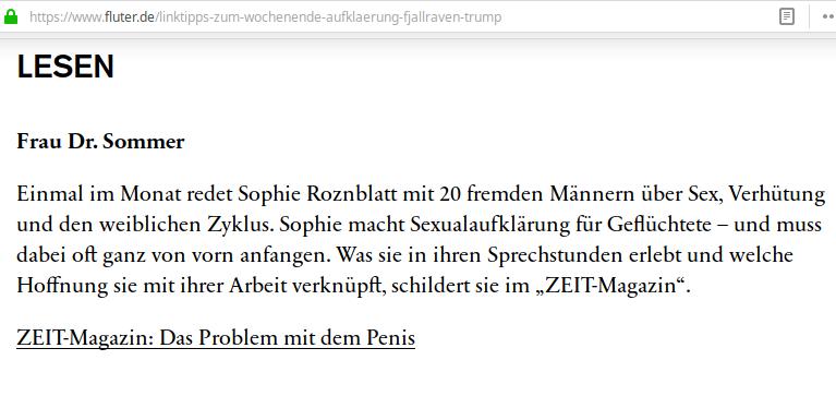 """Marie Sophie Hingst alias Sophie Roznblatt lieferte, was die Medien bringen wollten, wie bestellt. Auch """"fluter"""", das Magazin der Bundeszentrale für politische Bildung empfahl den erfundenen Bericht"""