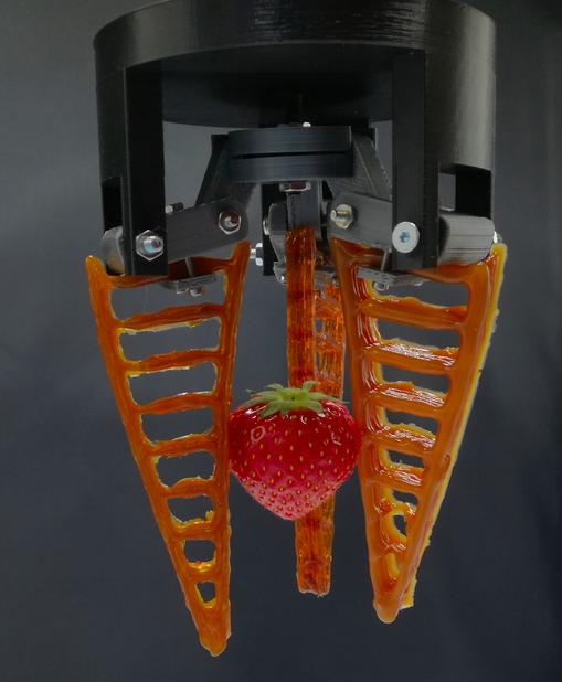 Ein 3D-gedruckter Greifer aus selbst heilendem Material hält eine Erdbeere. Bild: Vrije Universiteit Brussel