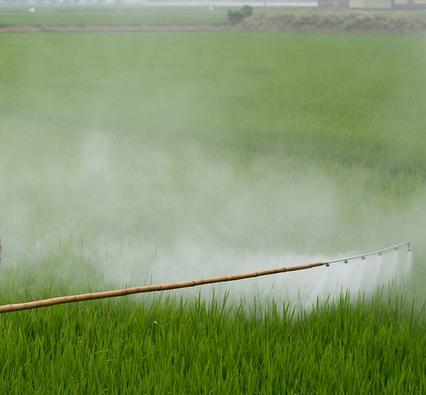 Viele Herbizide / Pflanzenschutzmittel sind noch erlaubt und werden von der Intensivlandwirtschaft für Ertragsmaximierung aggressiv eingesetzt. Dabei bleiben sie über Jahrzehnte im Grundwasser und vergiften sogar noch zukünftige Generationen.